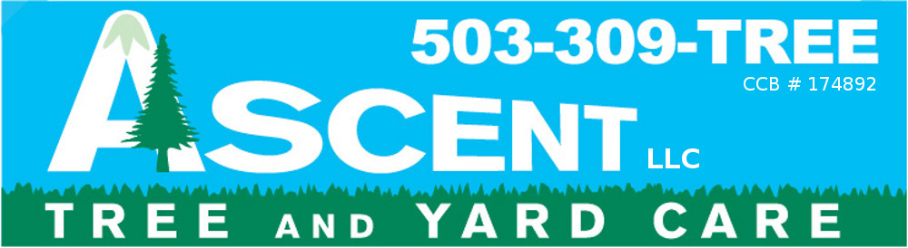 Ascent Tree and Yard Care Portland